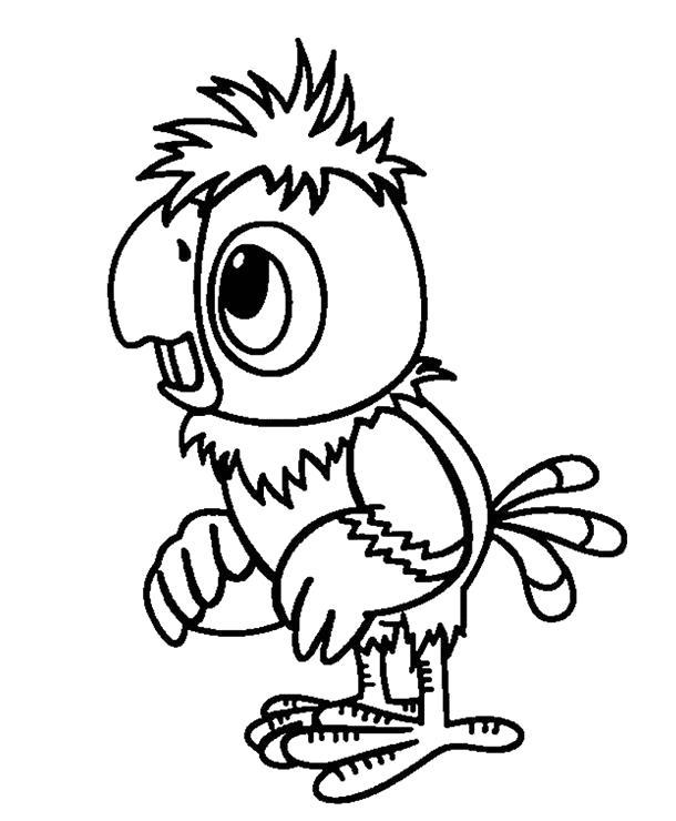 раскраски попугай раскраска попугай