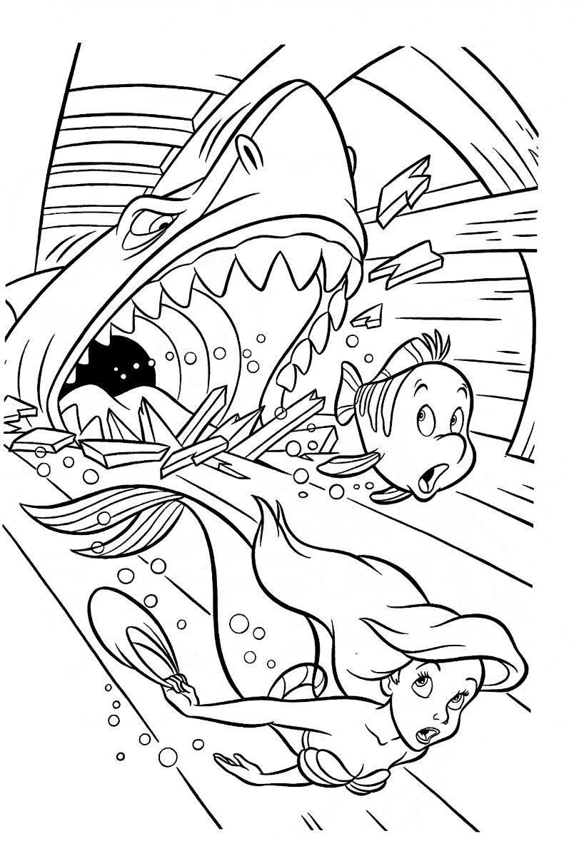 Акула прогрызла зубами лодку