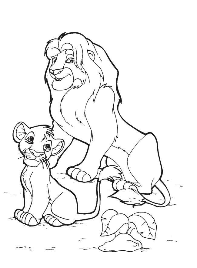 Раскраски львицы и львята  Львёнок с папой