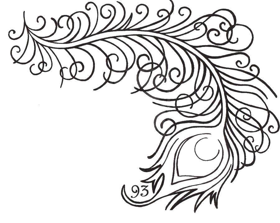 Раскраски домашние птицы павлин, птицы зоопарка павлины  Пьеро птицы павлина