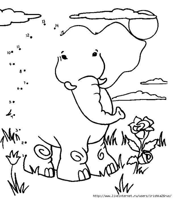 Слон и цветы