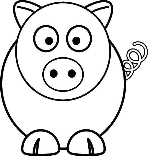 Свинка с пяточком