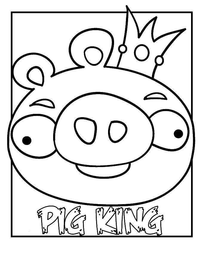 Свиной король