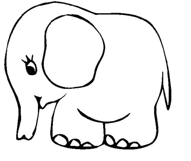 Стеснительный слонёнок