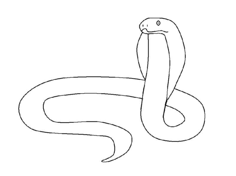 Раскраски змея  Опасная змея кобра