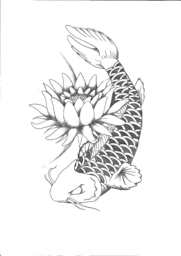 Карп у цветка