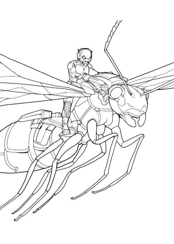 Человек муравей