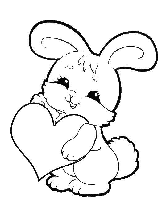 Раскраски зайчата и зайцы  Зайчик держит сердечко