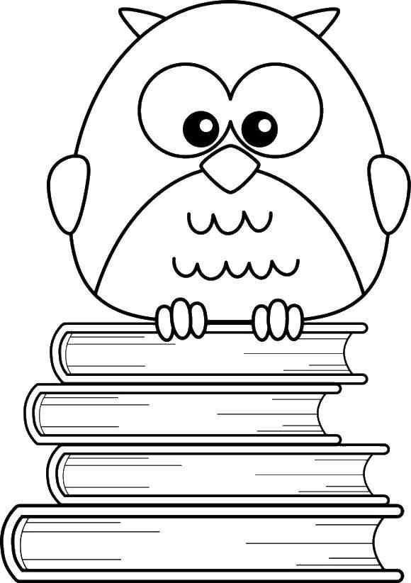 Раскраски сова