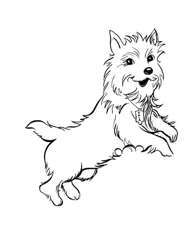 Рисунок собаки терьер