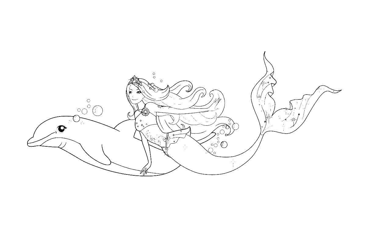 Раскраски дельфин раскраска