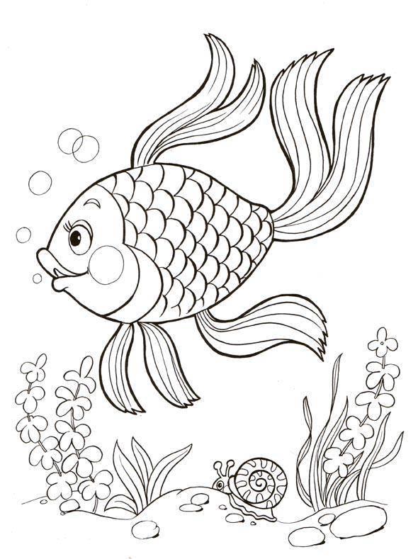 Раскраски рыбак