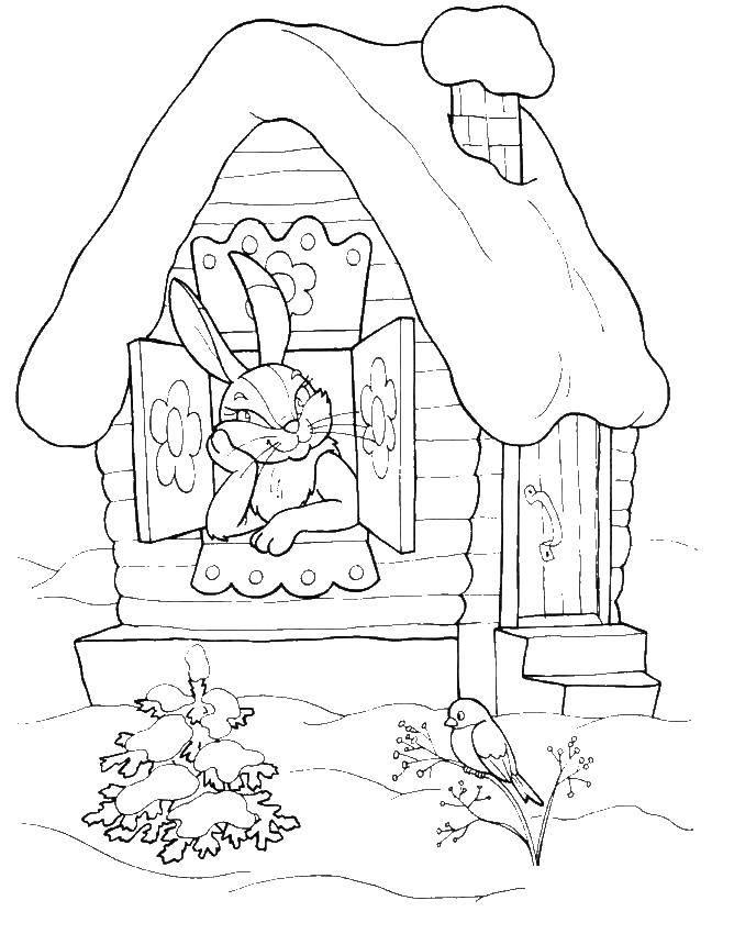 Раскраски зайцы, зайчиха, зайчонок  Заяц в избе