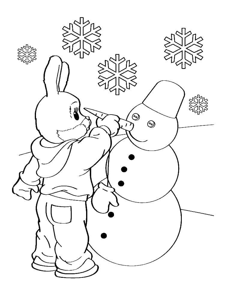 Раскраски зайцы, зайчиха, зайчонок  Заяц лепит снеговику нос