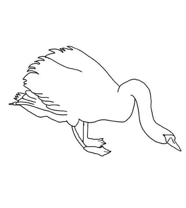 Лебедь наклонился