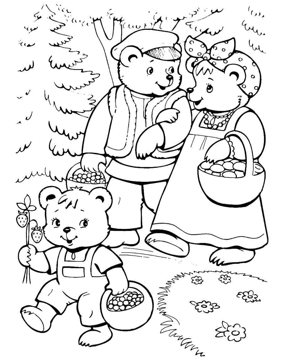 Раскраски медведь, медведица, медвежонок  Медведи гуляют в лесу