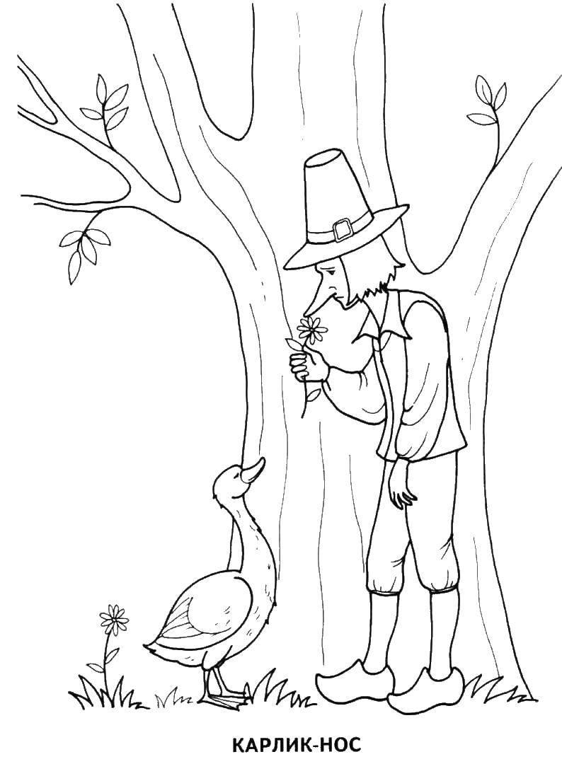 Карлик нос встретил гуся