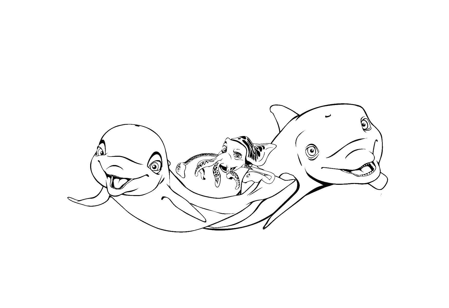 Раскраски золотая рыбка дельфины с дельфинами