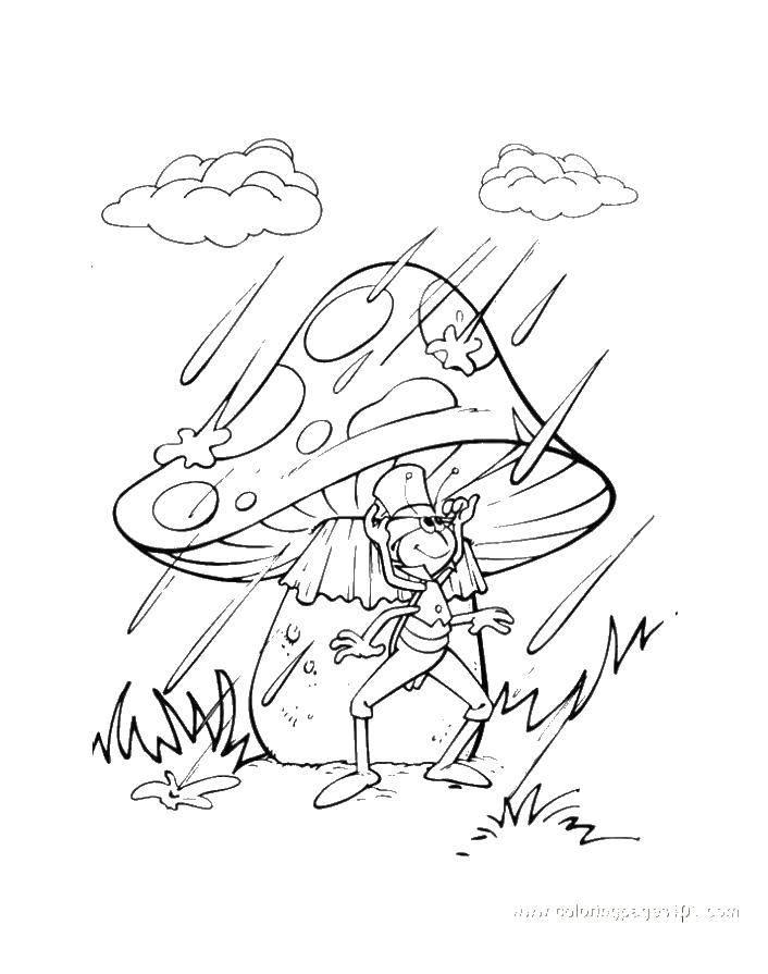Кузнечик под грибочком прячется