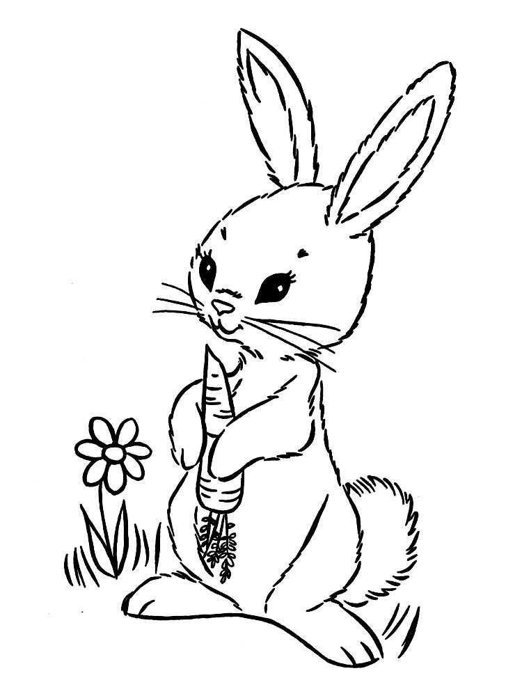 Раскраски зайцы, зайчиха, зайчонок  Заяц с морковкой