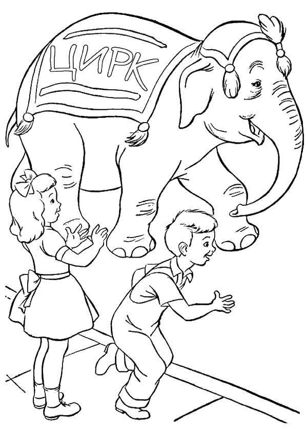 Дети и слоник