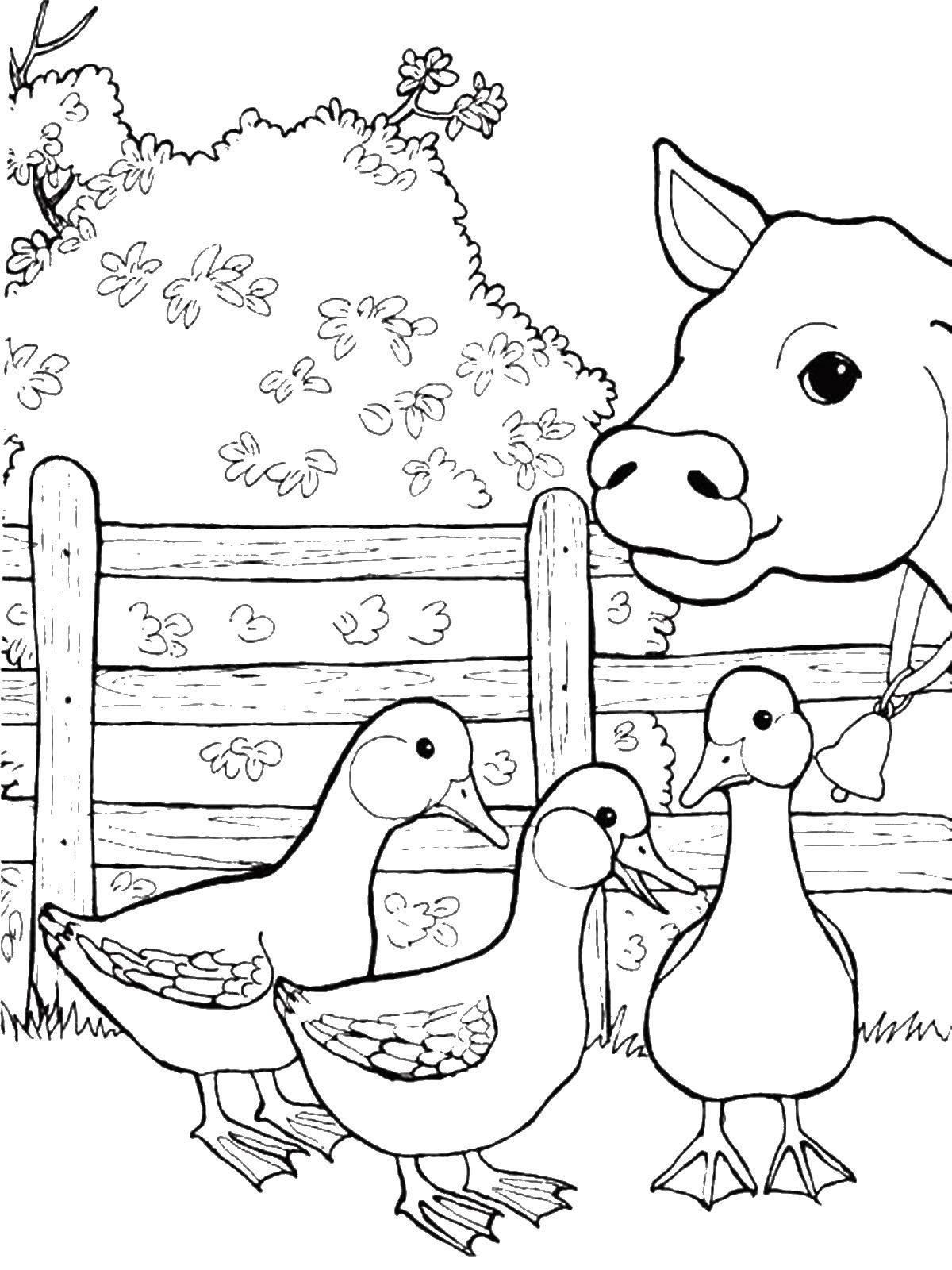 Гусятки и коровка