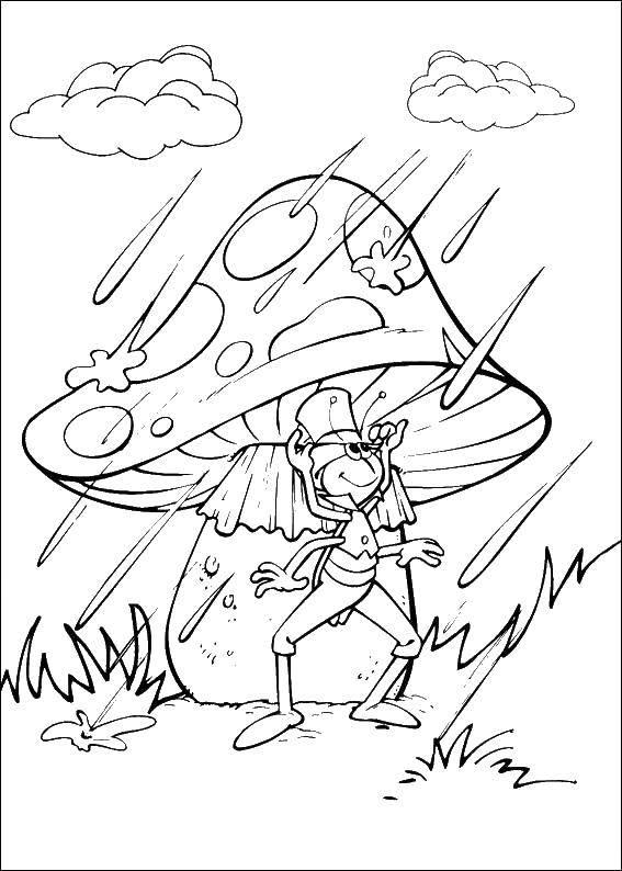 Кузнечик под грибочком во время дождя