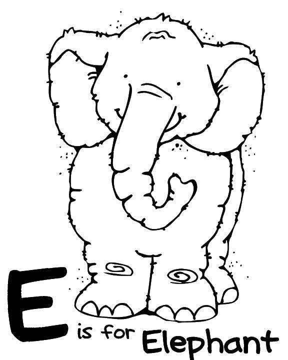 С значит слон