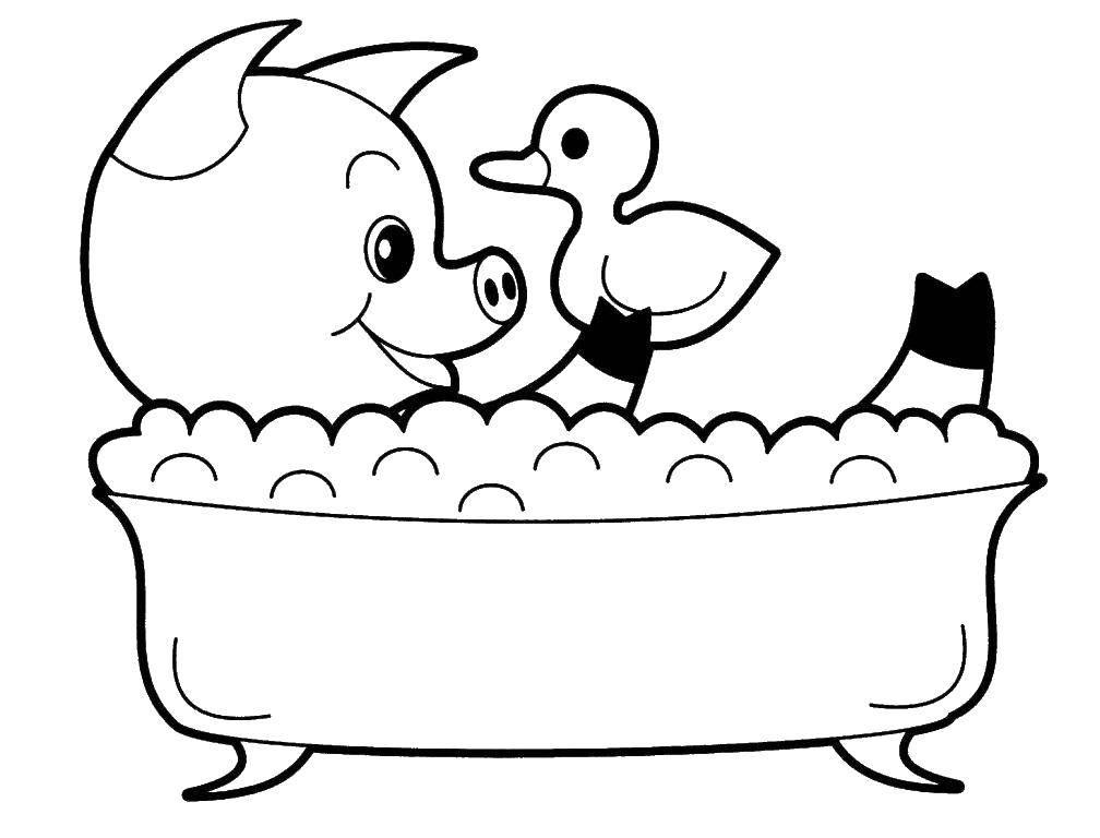 Свинка моется