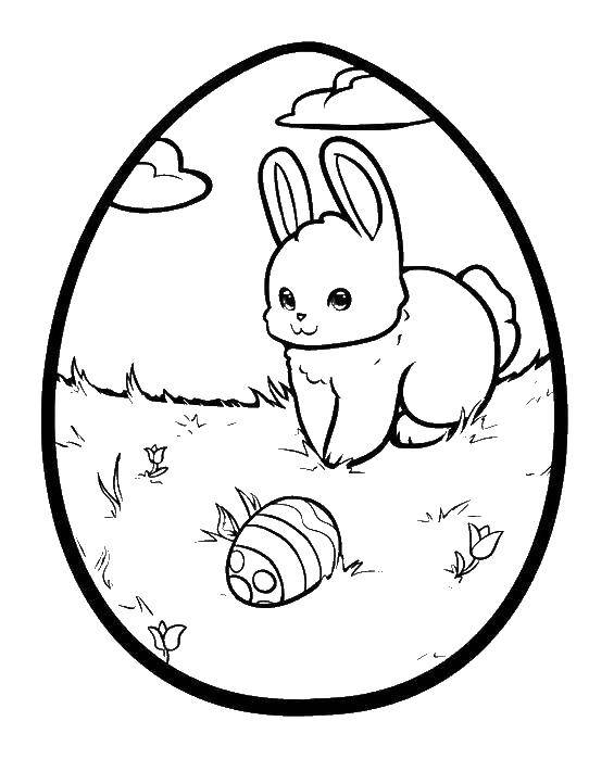 Раскраски зайцы  Пасхальное яйцо с рисунком зайца нашедшего яйцо