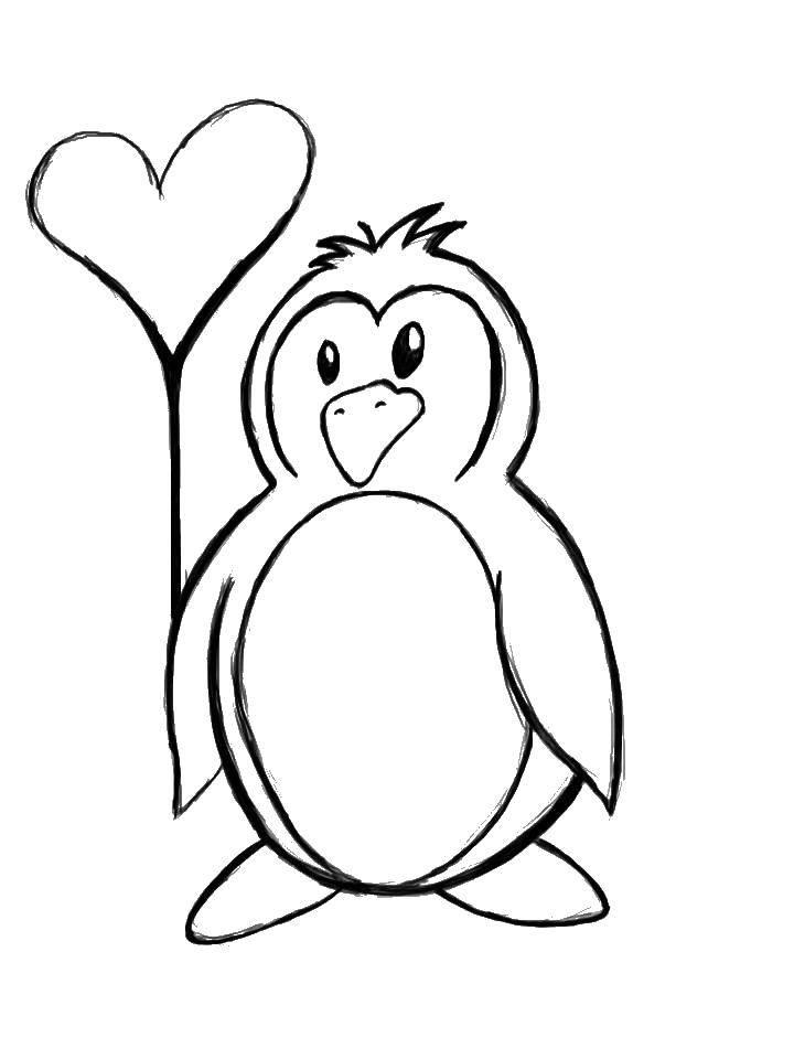 Раскраска с пингвинами  Пингвинчик с сердечком