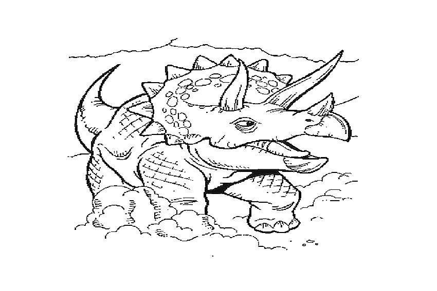 Трицератопс представитель птицетазовых динозавров