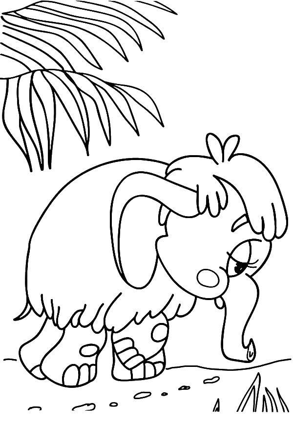 Грустный слоник