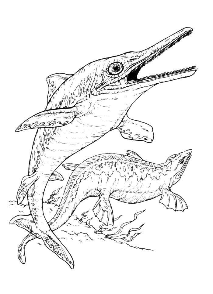 меч  Рыба меч и морской ящер