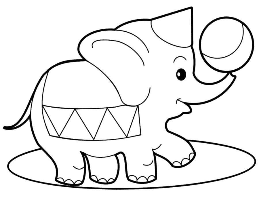 слоник играется с мячем