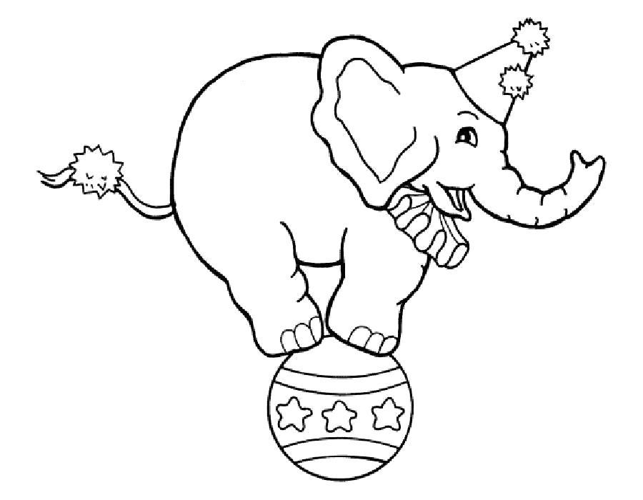Раскраска слон на шаре