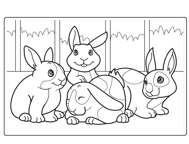 Раскраски зайцы, зайчиха, зайчонок  Заяц и кролики