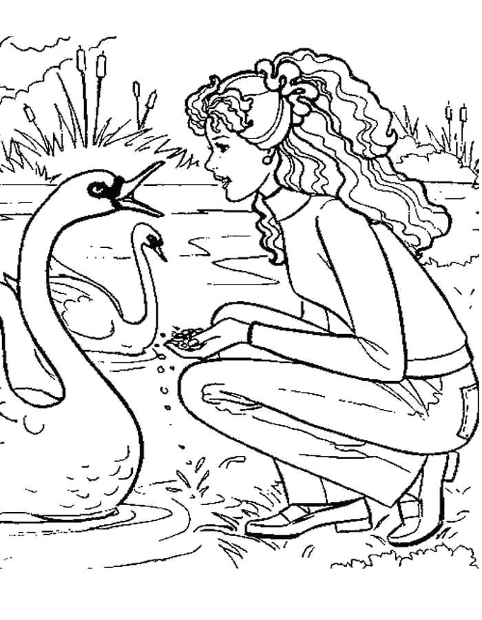 Барби и лебеди