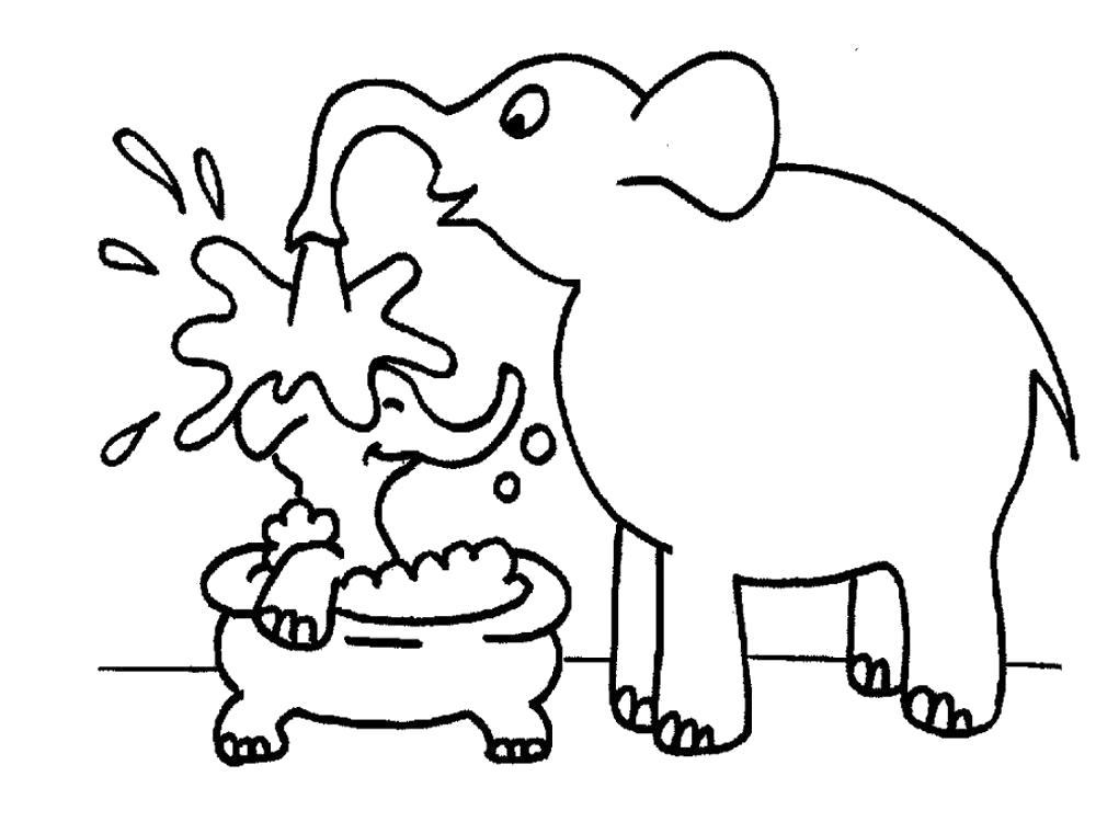 Раскраска слон моет слоненка из хобота