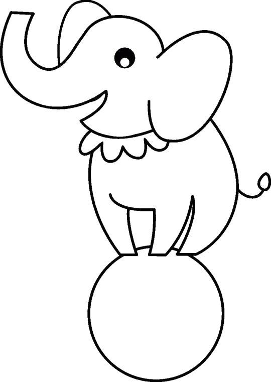 Слон на мячике
