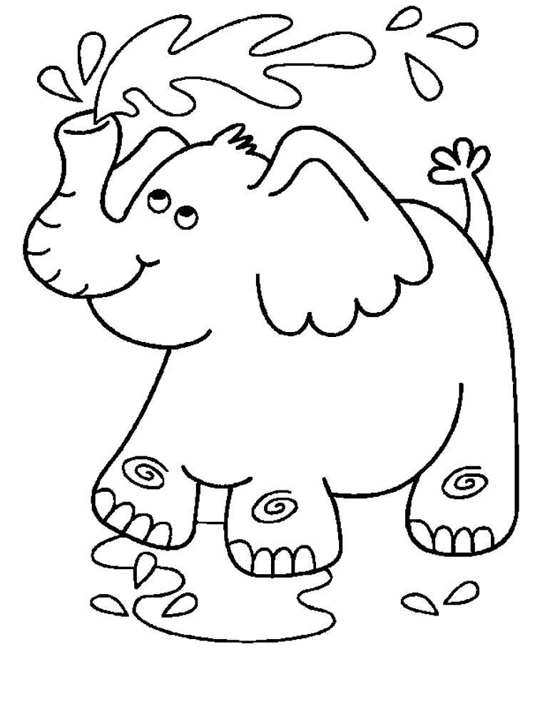 Раскраска слон поливает себя из хобота