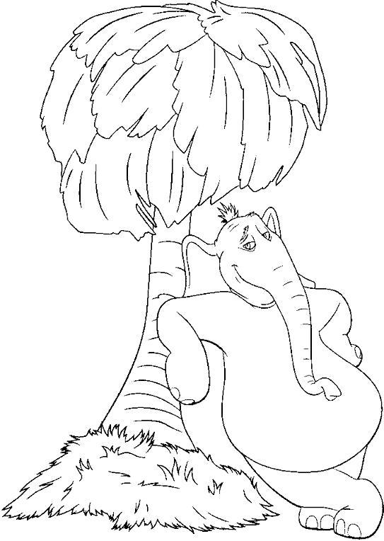 пальма и слониха