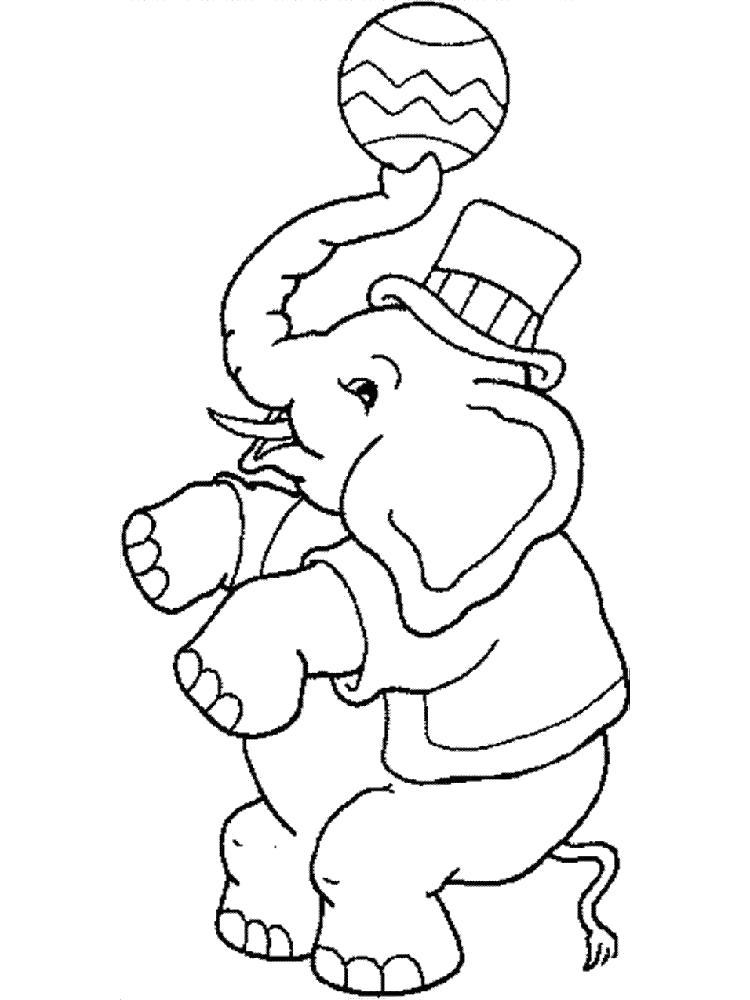 Раскраска слон в цирке