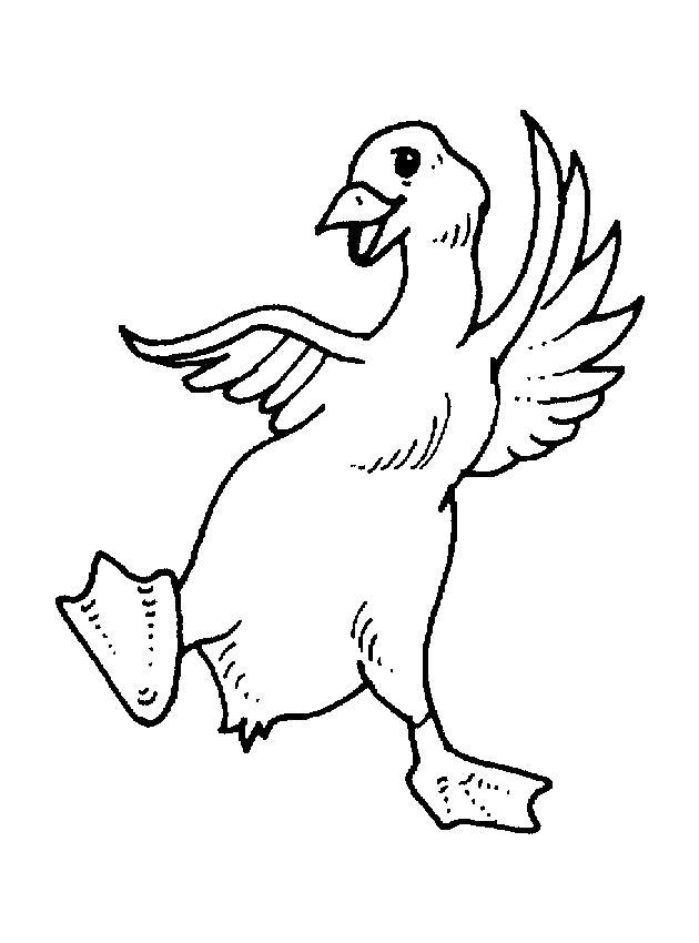 Раскраска с гусями  веселый гусенок