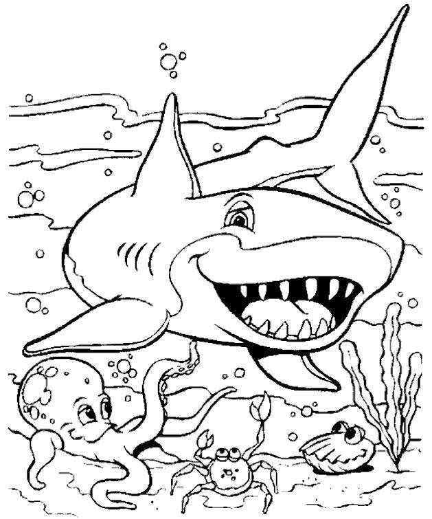 Акула и морские жители