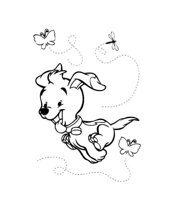 Раскраска щенок бежит