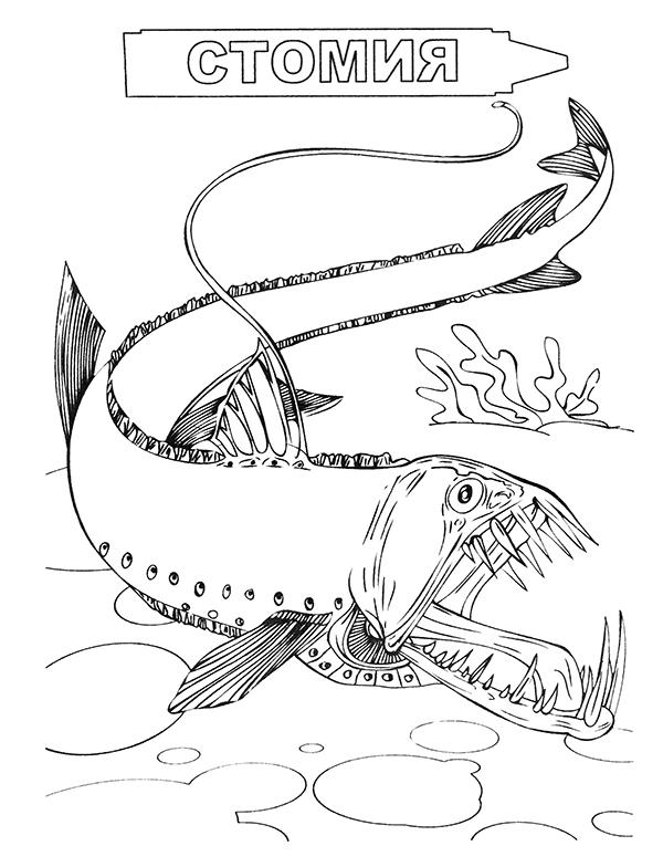 Раскраски глубоководных рыб