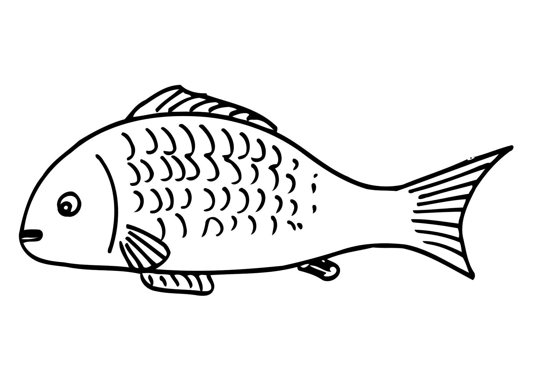 Карась рыба.