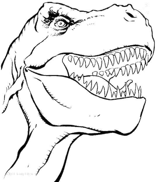 Острые зубы тираннозавра