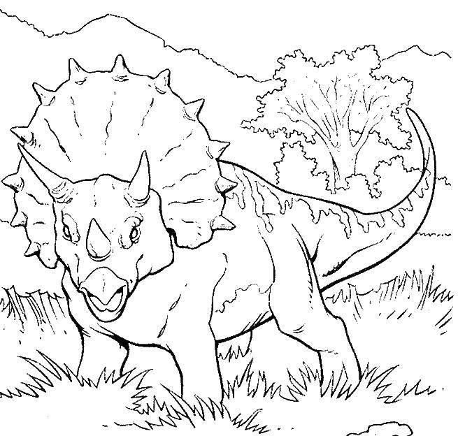 Трицератопс растительноядный динозавр